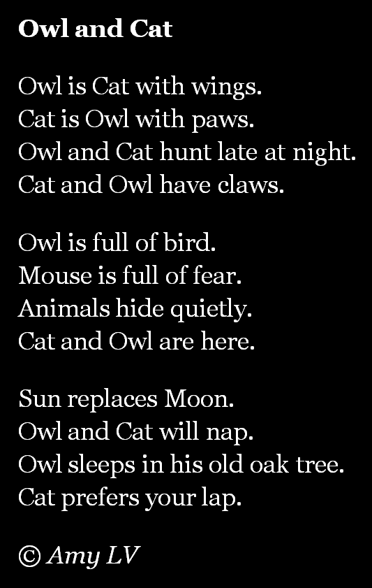 The Poem Farm: Owl and Cat - My Poem Writing Year #131