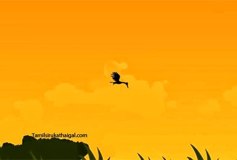The Fox And The Stork - 4