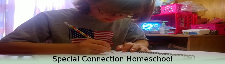 Special Connection Homeschool