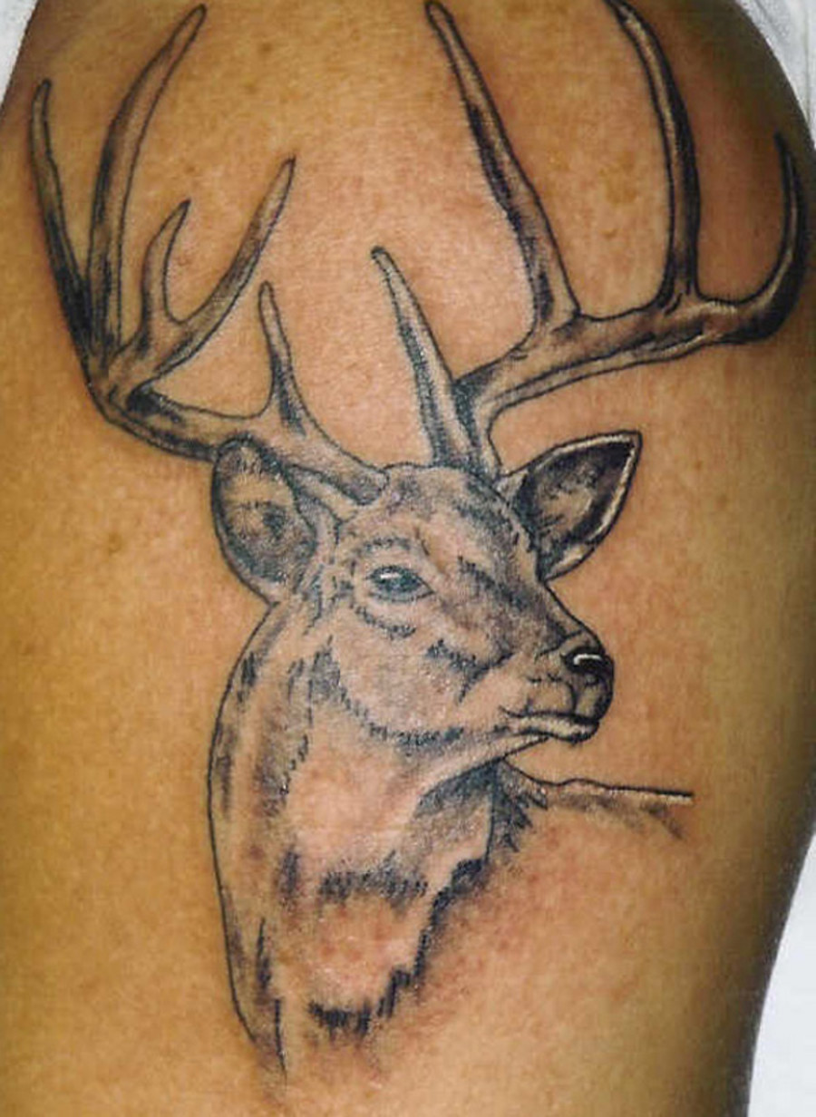 wild tattoos deer tattoo design ideas. Black Bedroom Furniture Sets. Home Design Ideas