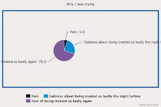 A pie chart entitled 'why I was crying'. There is a dark blue slice taking up 5% titled 'pain'. Then there's an aqua-coloured slice accounting for 25% of the pie entitled 'sadness about being treated so badly the night before'. Then there's a purple slice accounting for the remaining 70% of the pie labelled 'fear of being treated so badly again'.