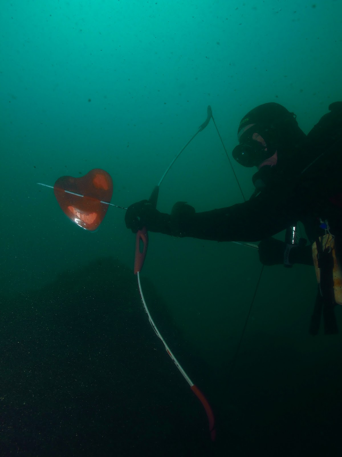 La trib diving academy concorso abyss - Dive per sempre ...