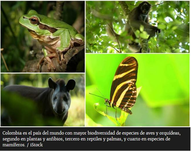 Colombia sede del día del medio ambiente