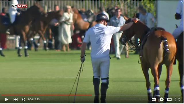 Prins Harry beloont zijn polopony na een buiteling tijdens een wedstrijd in Kaapstad