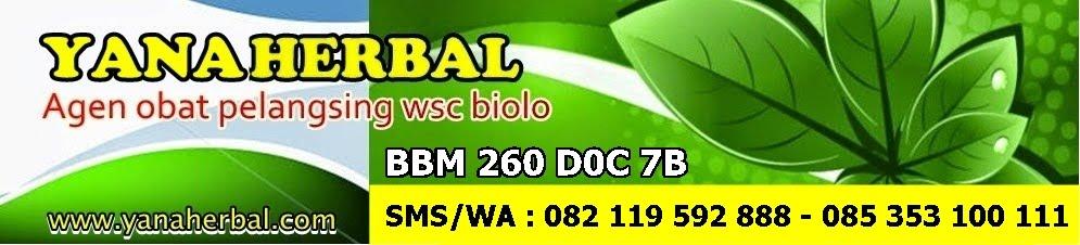 Obat Pelangsing Manjur WSC Biolo
