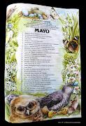 MAYO Auténtica explosión de vida. Multitud de animales se encuentran en . (calendario natural mayo fjbarbadillo)