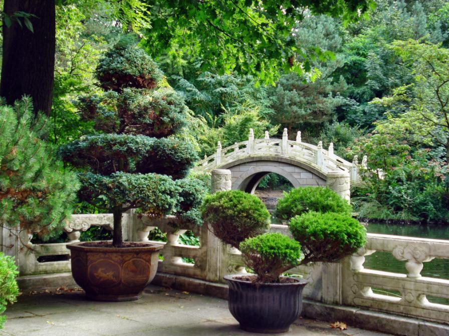 Matin lumineux jardin chinois de duisbourg for Jardin chinois