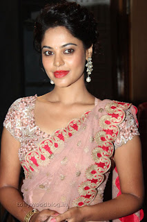 Actress Bindu Madhavi Saree Picture Stills 011.jpg