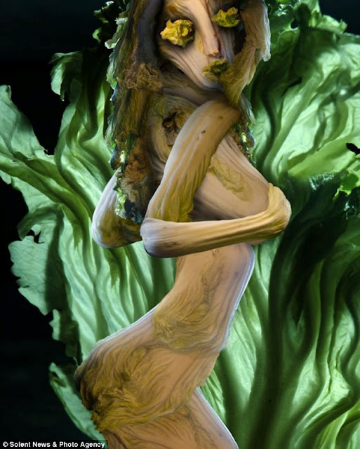فنانة صينية تبدع في إستخدام  ورق الملفوف LEAF+ART+3