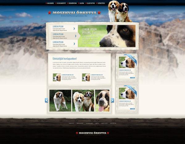 Web-design-Kenne