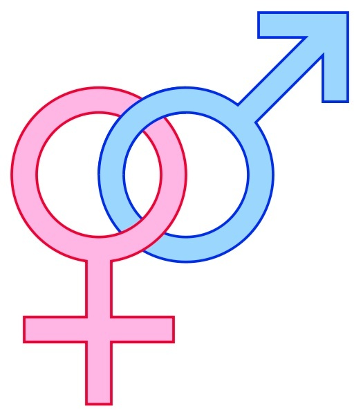 Male and female sex signs
