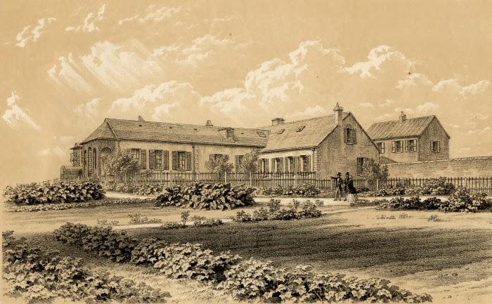 Olney family archives doris moss napoleon and st helena for Longwood house