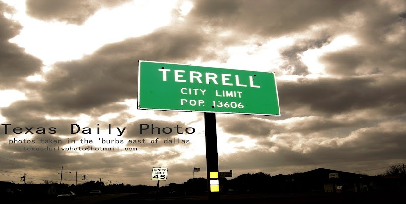 Terrell Texas Daily Photo