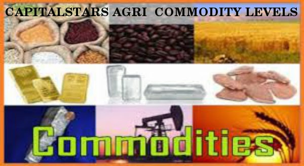 Chana , Dhaniya , soyabean , cs turmeric, Agri Commodity Tips, free agri calls, Future Trading Tips