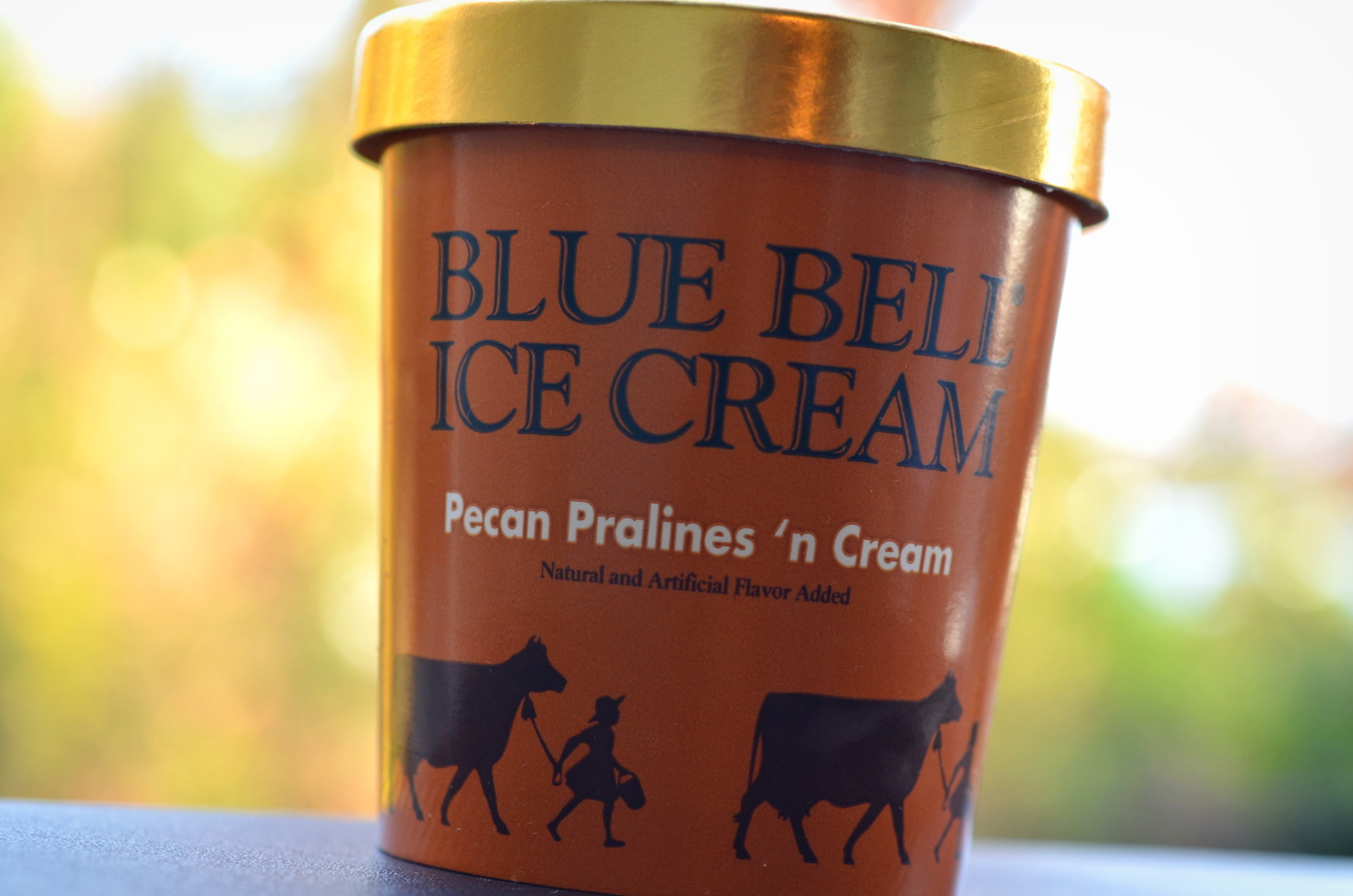 food and ice cream recipes REVIEW Blue Bell Pecan Pralines n Cream