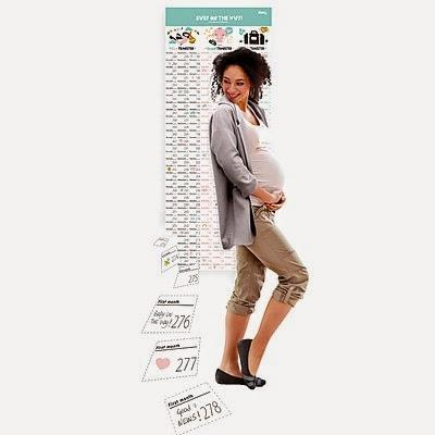 Calendario Bebé en Camino