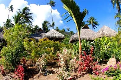 Moorea traveler intercontinental resort spa moorea for Garden pool bungalow moorea pearl resort
