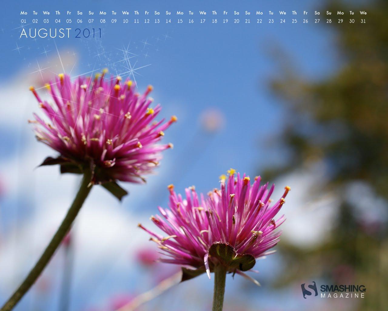 http://2.bp.blogspot.com/-ZpFAb-iw8D4/Tji_mWo-RZI/AAAAAAAAwYQ/nSsCByGbuzc/s1600/august-11-pink_flowers__73-calendar-1280x1024.jpg