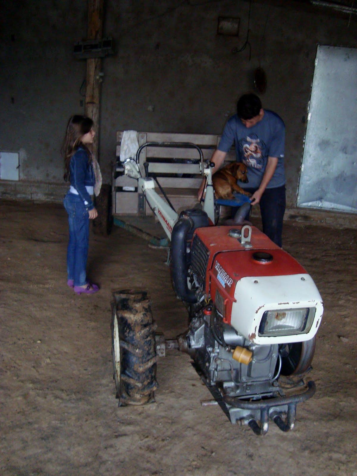 http://2.bp.blogspot.com/-ZpOhokmwtQc/TmKBu78i-AI/AAAAAAAABDs/35ce01INlgA/s1600/Vestido+da+Lara+-+Ituporanga+SC+015.JPG