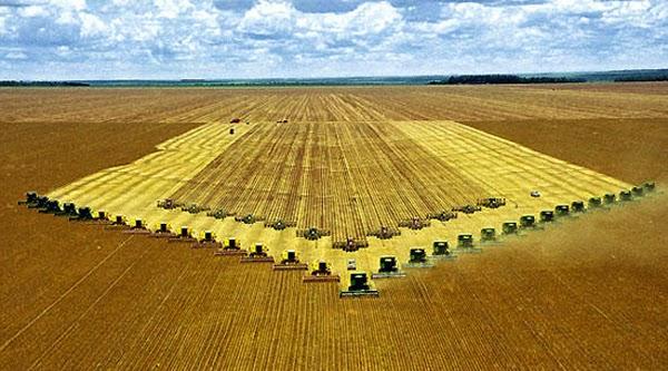 Aumento do custo da produção da soja preocupa agricultores