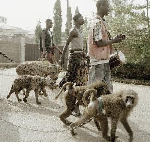[003,0K] Kotunga - Page 4 African+pets
