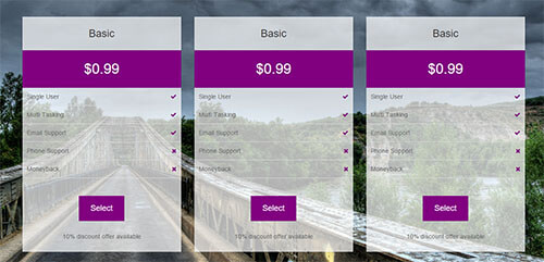 Beautiful Pricing Table