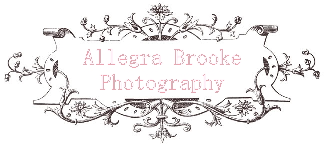 Allegra Brooke Photography
