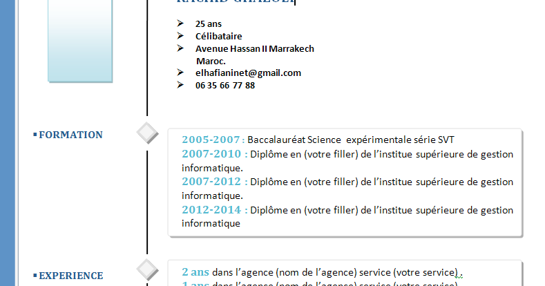 comment faire un cv  exemple cv original simple word