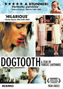 "Recomendado 64: ""Canino"" (2009), de yorgos Lanthimos"