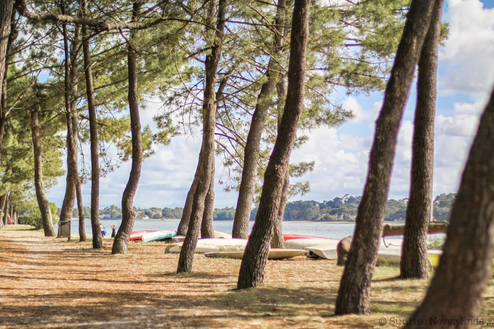 hossegor,le lac,guinguette,buvette,vacances