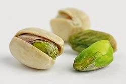 Cachorro pode comer pistache?