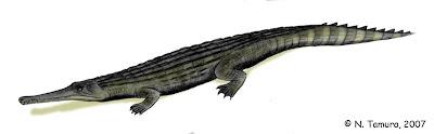 Dyrosaurus