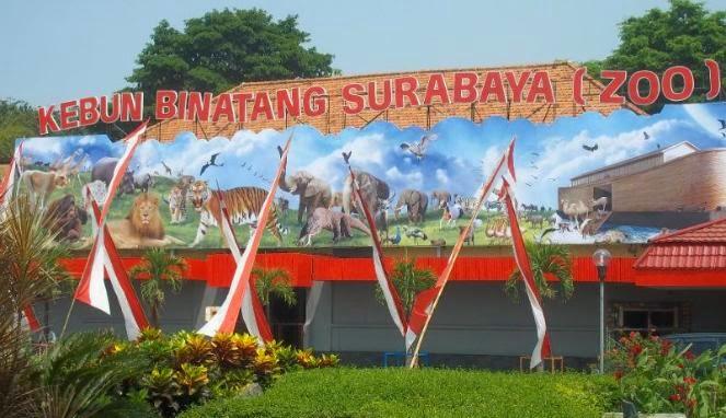 tempat wisata Kebun Binatang Surabaya