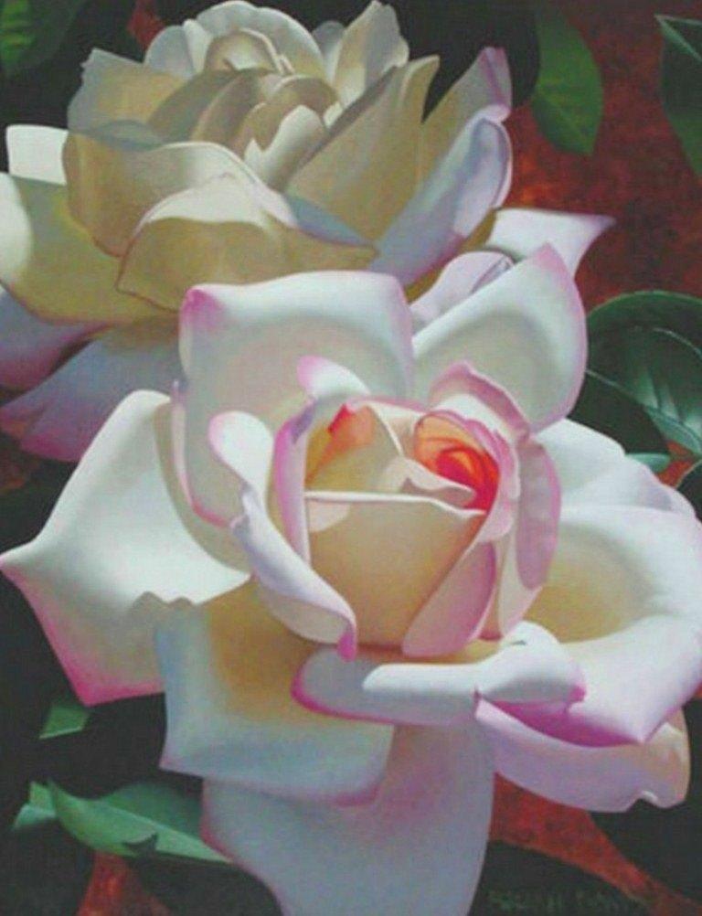 Fotos Gratis Naturaleza – Flores – Margaritas Pintura y  - Imagenes De Cuadros Con Flores Blancas