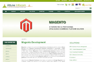 magento, magento development, magento developer, magento website development, magento website developer, magneto integration services, magento development services, magento training, magento solution, magneto development usa