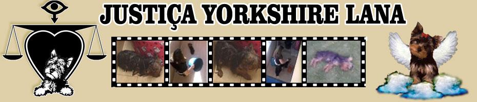 Justiça Yorkshire Lana