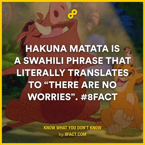 "Hakuna Matata is a Swahili phrase that literally translates to ""There are no worries"""