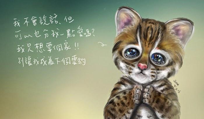 Leopard Cat Jema Chen