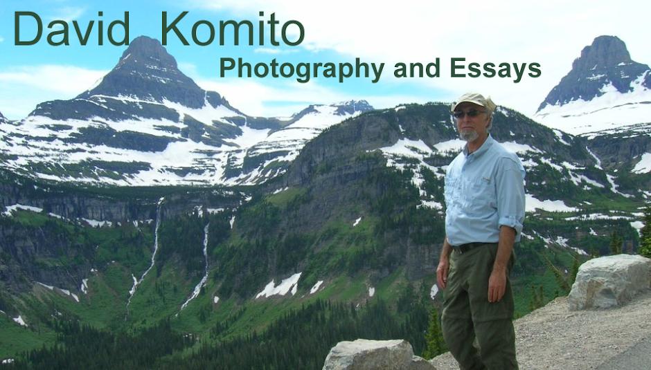 David Komito