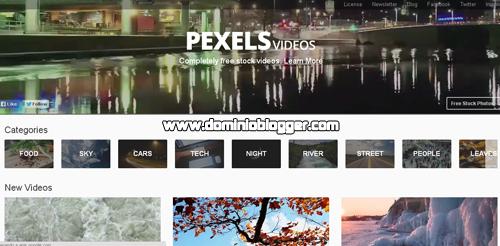 Videos gratuitos para uso comercial en Pexels Videos