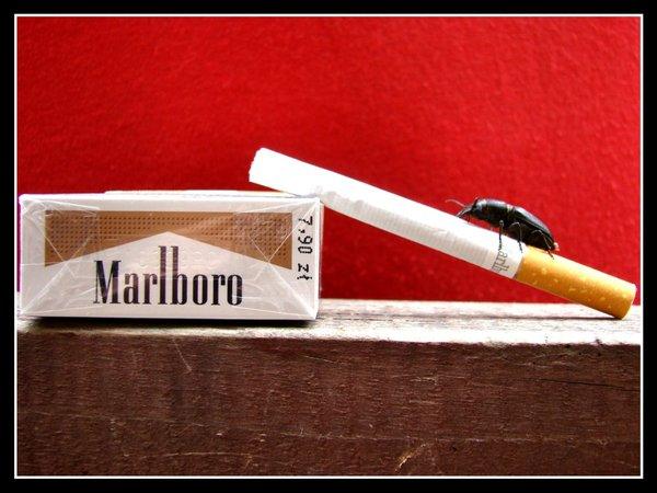 Craven A cigarettes gold touch