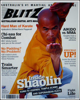 <strong><em>Blitz Martial Arts Magazine - April Issue</em></strong>