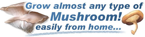 Mushroom Growing Supplies