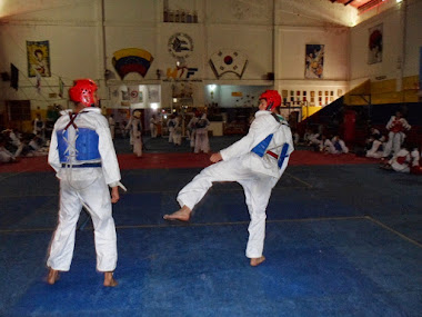 Merideños listos para afrontar regional de taekwondo