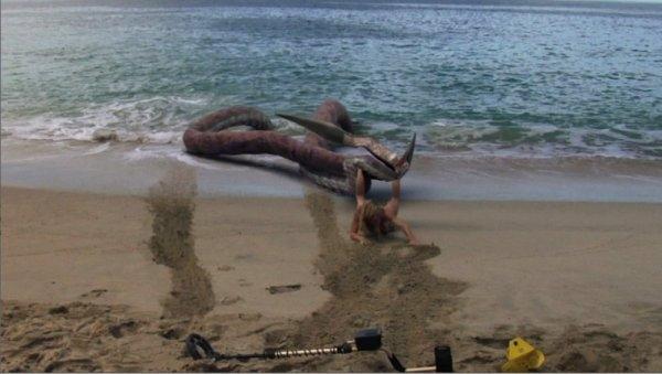 Cá Mập Lên Bờ (Cá Mập Lai Bạch Tuộc)