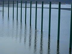 Stangen im See