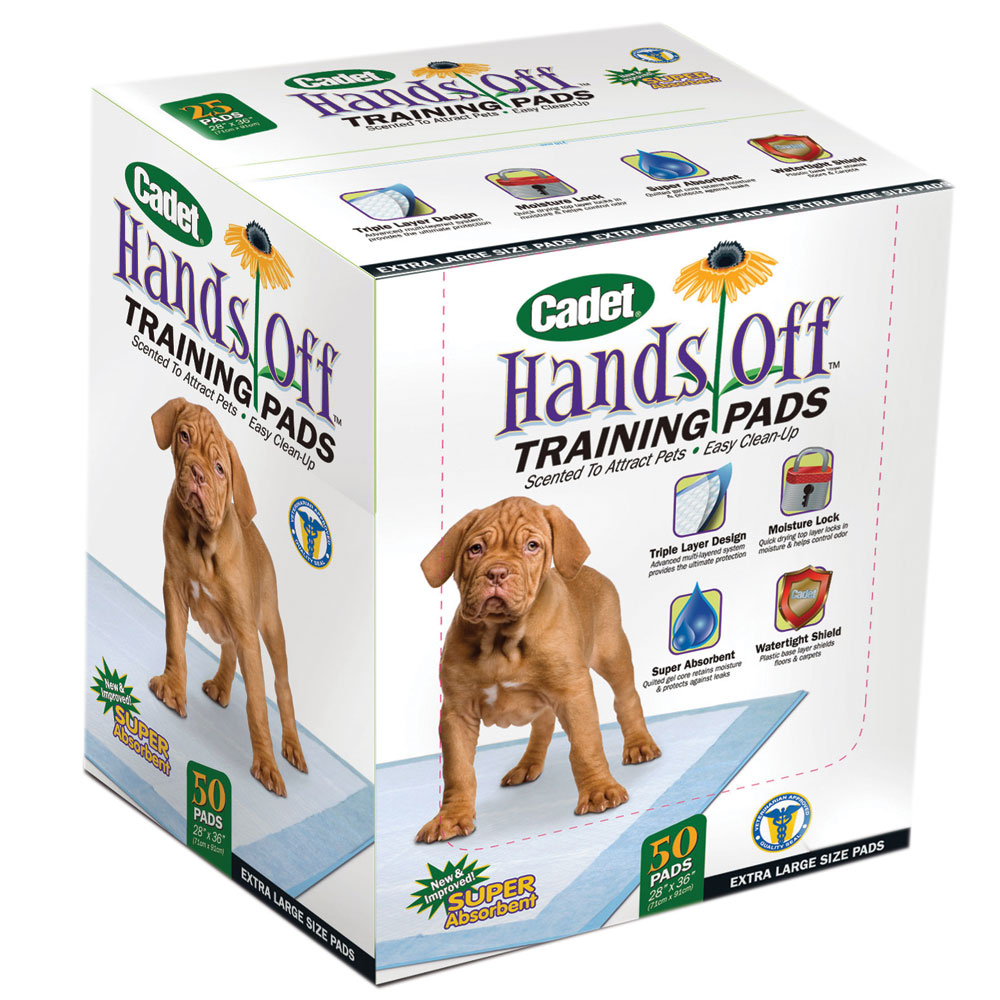 Hands Off Dog Training Course Review - Labradoodle