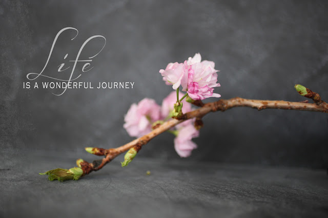 life is a wonderful journey essay Free essay: this journey of self discovery, enlightenment and acceptance, were all key discerning factors in how, for sally, the journey was a rewarding.