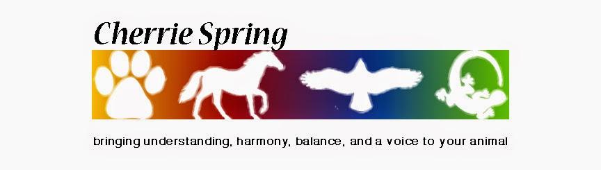 Cherrie Spring