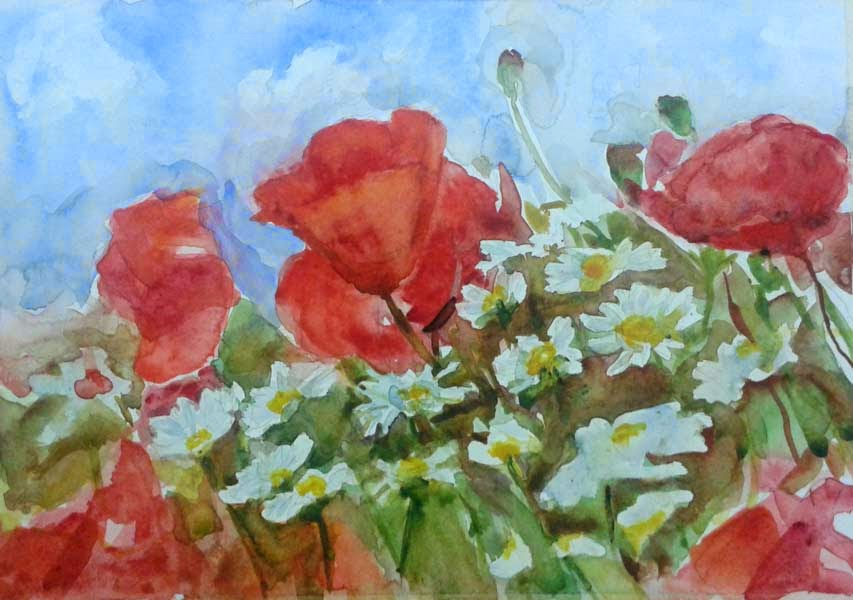 poppys and daisys watercolor